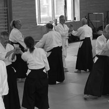 Aikido -Lehrgang