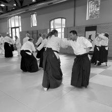 Aikido - Lehrgang