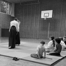 Aikido Kindertraining II