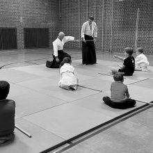 Aikido Kindertraining IV